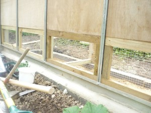 chickengreenhouse3