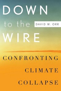 down-to-the-wire-confronting-climate-collapse