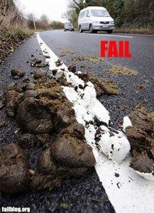 """Road Paint Fail"""