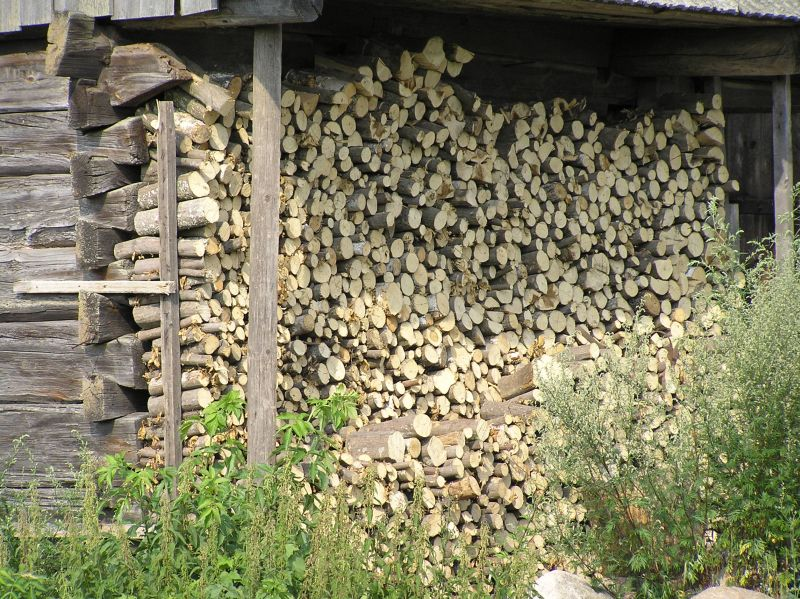 Is Burning Wood Really A Long-Term Energy Descent Strategy